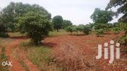 Prime Plots - Kwa Vonza Kitui | Land & Plots For Sale for sale in Kitui, Kwavonza/Yatta