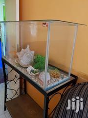 Fully Decorated Aquarium | Home Accessories for sale in Nakuru, Nakuru East
