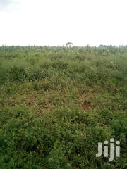 Prime 2.5 Acres Agricultural Land at Nanyuki | Land & Plots For Sale for sale in Laikipia, Umande