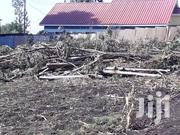 Firewood For Sale   Meals & Drinks for sale in Kajiado, Ongata Rongai