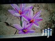 TV 32 INCH | TV & DVD Equipment for sale in Nyandarua, Gatimu
